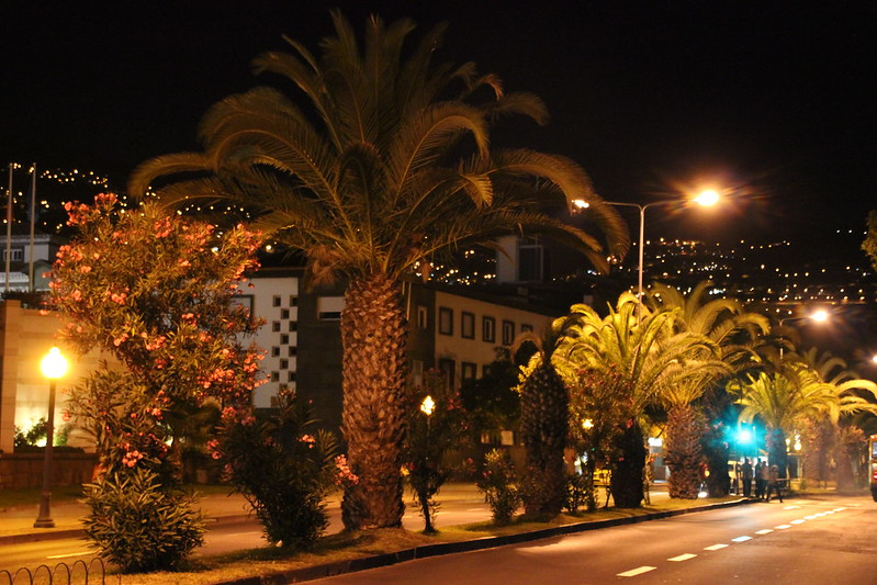 Madeira, Funchal 2014 + ostokset 1582