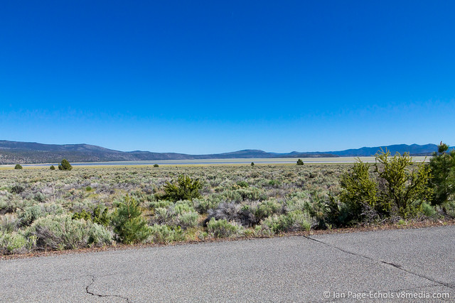 Old Road, Scrub Brush, and Shallow Lake