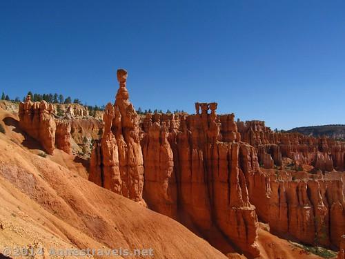 Hoodoos from Sunset Point, Navajo Trail, Bryce Canyon National Park, Utah