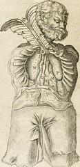 "Image from page 133 of ""Anatomiae amphitheatrvm effigie triplici, more et conditione varia, designatvm"" (1623)"
