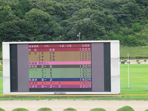 佐賀競馬場のビジョンに映し出される低配当