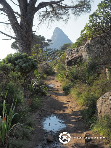 Sugar Loaf Of Cape Town