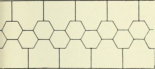 Image from page 250 of