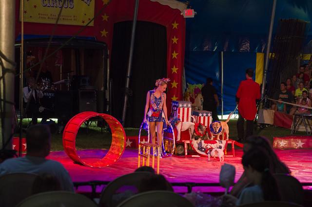 20140720-Circus-2397