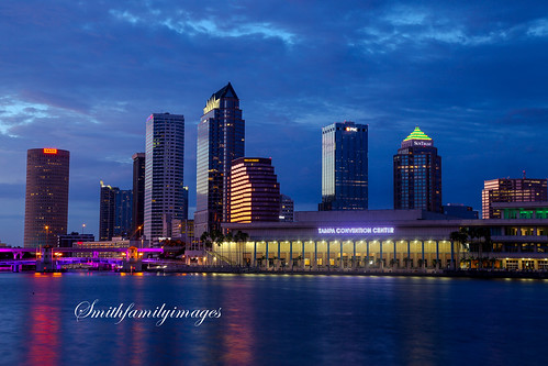 city color water skyline night tampa florida