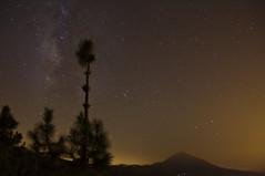 Vía Láctea, Teide, pinos y contaminación lumínica