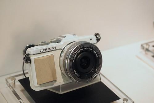 P8290337 - Version 2