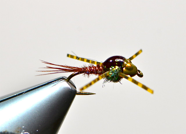 evolution-pheasant-tail-nymph