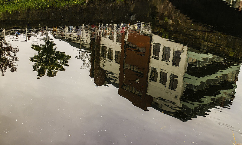 cork reflections 12