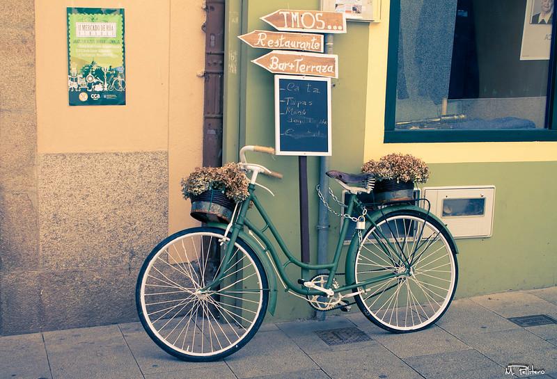 Bicicleta Floreada