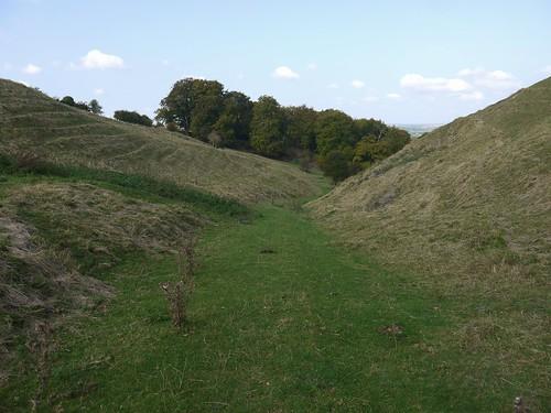 Wonderful sunken path