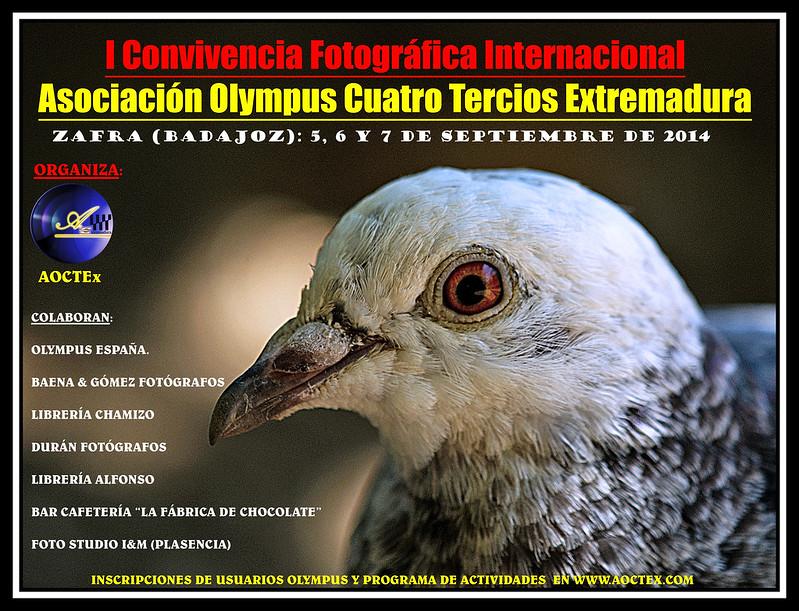 Cartel Oficial de la Convivencia y Material que aportará Olympus España 15136522791_2cb65e40c6_c