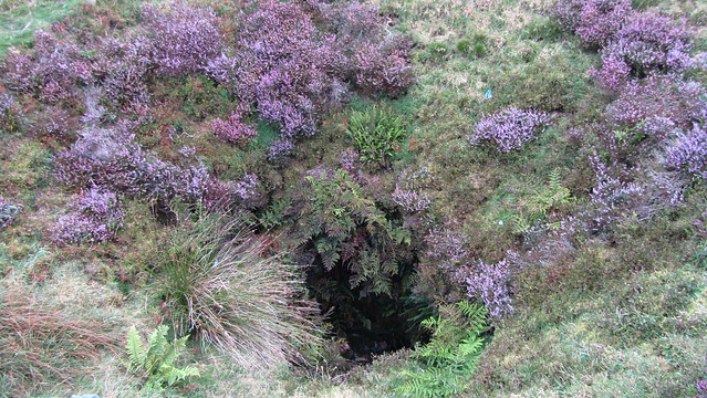The Hanging Gardens of Eylesbarrow Tin Mine