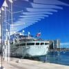 Nos vamos de #crucero ? #cruise #malaga #igersmalaga #iphone #picoftheday #fotodeldia