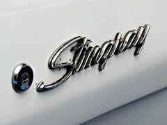 Stingray_Insignia_DSCN0122