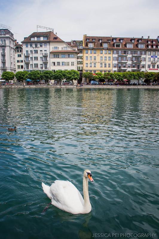 Reuss River Lucerne Switzerland