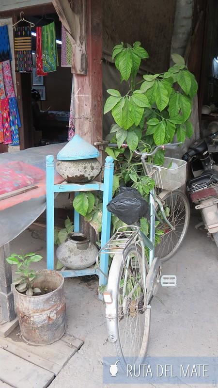 Viajes sincronizados Hsipaw Myanmar (3)