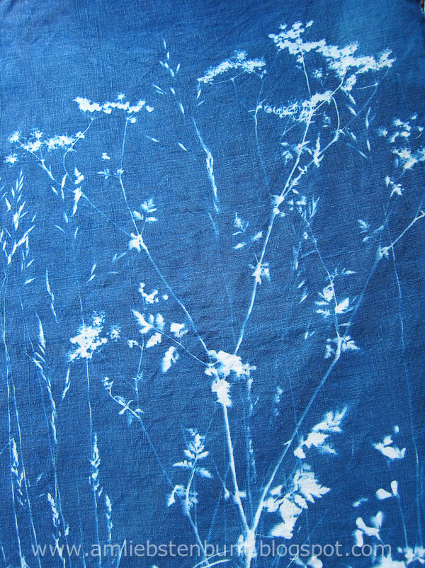 cyanotype_on_fabric_by_Kristina_Schaper_4861.jpg