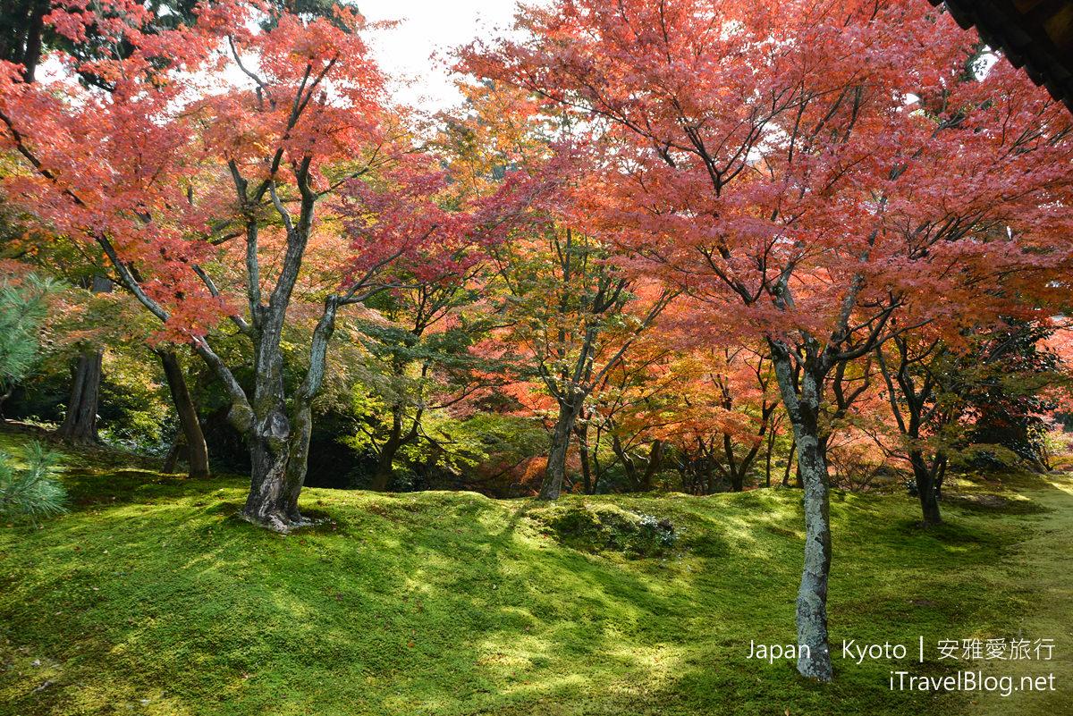 京都 东福寺26