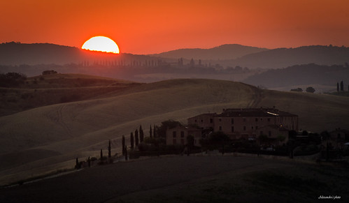 Terra di Siena #1