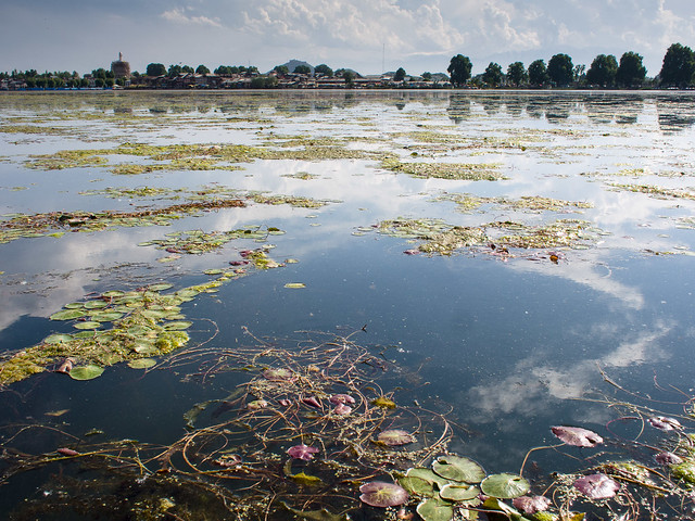 Header of dal lake
