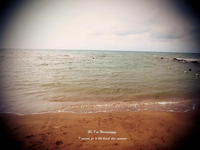 淺水灣 (3)