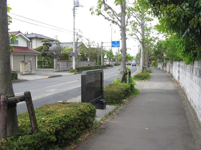 圏央道 青梅トンネル (16)