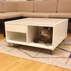 shelf(0.0), sideboard(0.0), floor(1.0), furniture(1.0), coffee table(1.0), table(1.0), living room(1.0), couch(1.0), studio couch(1.0),
