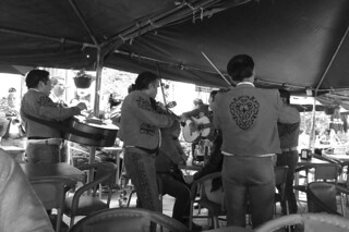 Guadalajara - Plaza de los Mariachis mariachi day