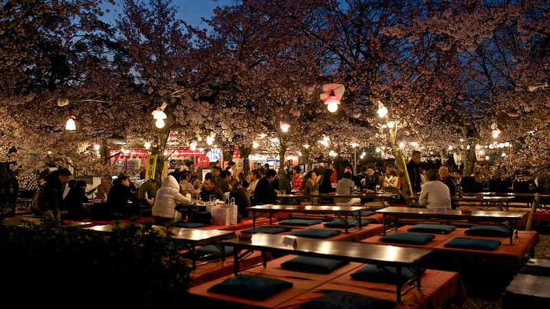 Sous les Sakura