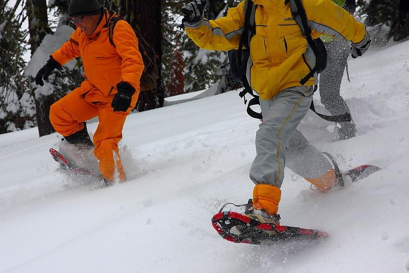 IMG_8429 Ranger-Led Snowshoe Walk