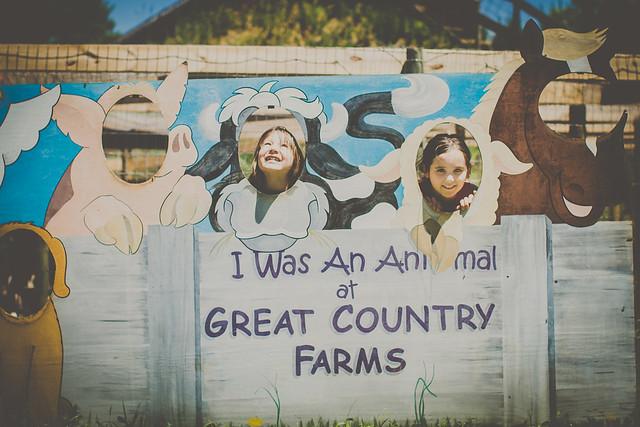 farm (6 of 9)