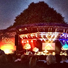 Bill Bailey at Kew Gardens!