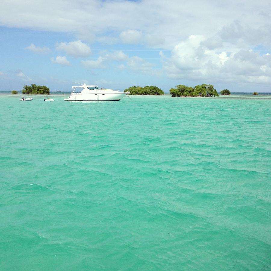 Guadeloupe (7)