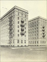 "Image from page 39 of ""... Annual report of the Presbyterian Hospital in the city of Chicago, with the constitution, by-laws and charter."" (1920)"