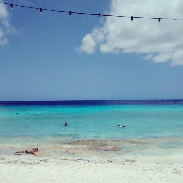 Cas Abou beach #curaçao #caribe #caribean #viagem #trip #Travel #férias #vacation #vacaciones #casabou #playa #beach