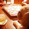 Oscar plays one last game of #scrabble before we head to Colorado tomorrow #dog #dogs #shihtzu #dogsplayingscrabble #dogsplayingpoker #games #gaming #gamenight