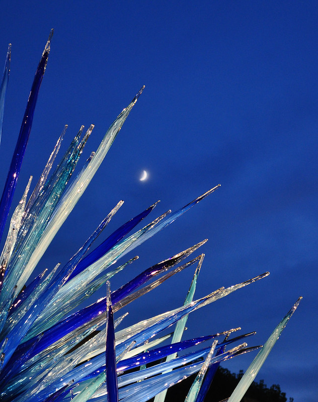 Chihuly 'Lapis Icicle Tower' (7)