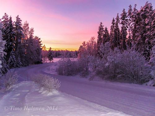 pink winter sunset digital canon ixus talvi auringonlasku 100is