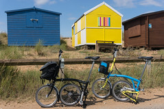 A Tale of Two Bromptons