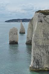 Old Harry Rocks  - Dorset