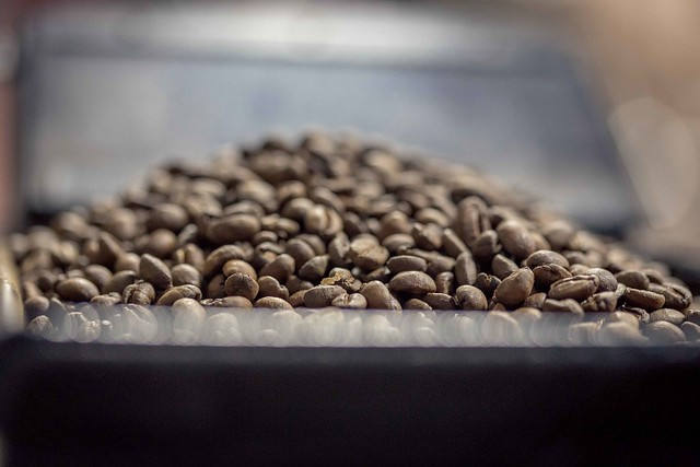 coffee beans spectrophotometry