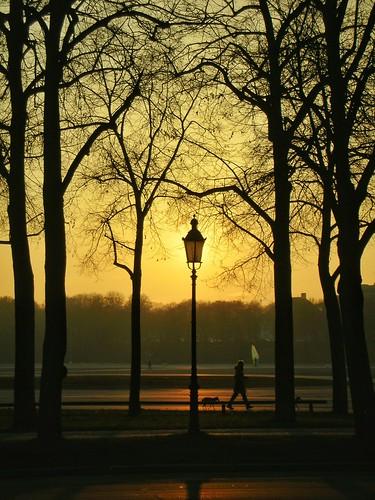 nikoncoolpixs1 vintagecamera pointandshoot pocketcamera sunset dusk evening winter streetphotography orange park theresienwiese munich germany lamppost silhouette