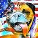 """Alls I can says is… HappyPresidents Day to all dosePresidents dat gone before!"" PugsleyLuigi  #presidentsday #usa #unitedstates #pug #dog #history ##pugsleyluigi #notmypresident #flag #zen"