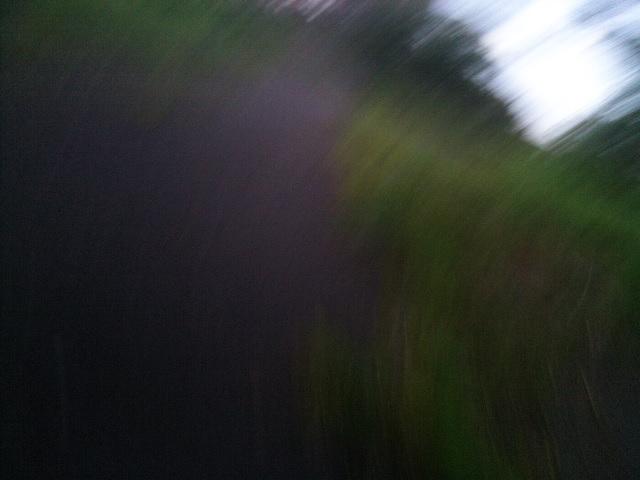 PIC_1364
