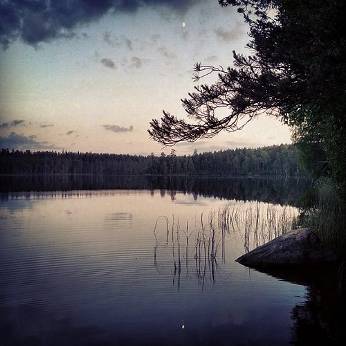 Summer nightfall