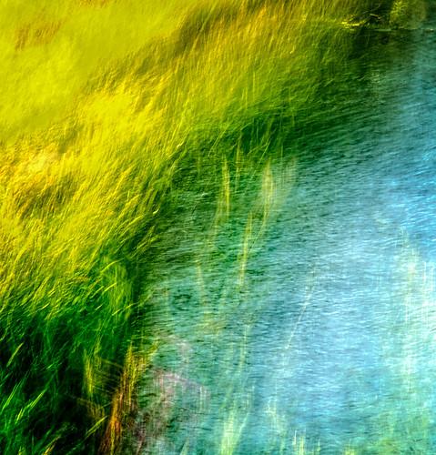 sunset grass southdakota creek sunrise unitedstates wind blowing sd grasses rapidcity