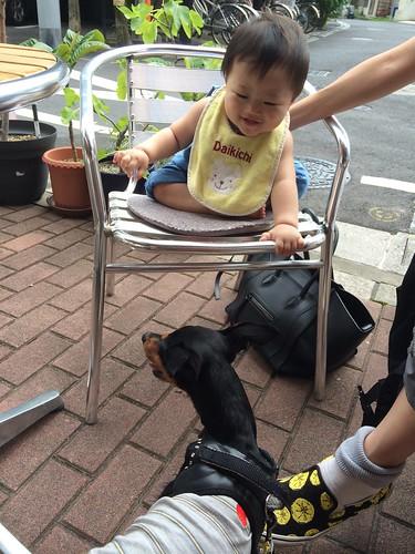 赤ちゃん、黒犬と戯れようとしています。
