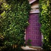 Secretive purple door.