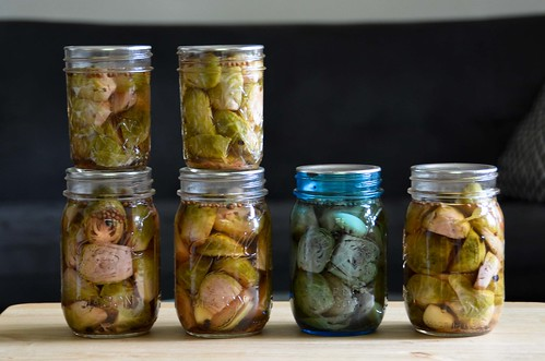 ... : bring your own vegetables: Success: Pickled Brussels Sprout Halves